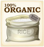 Affiche de riz vecteur