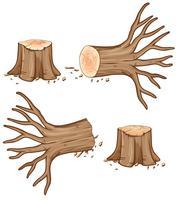 Bûche et branche de bois séchée