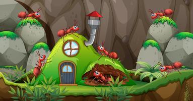 Toute maison en pleine nature vecteur