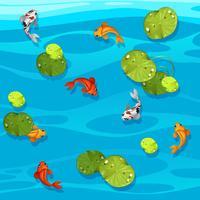 Gros poisson koi dans un étang vecteur