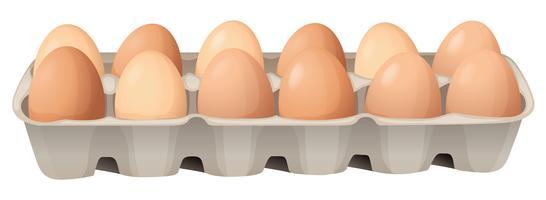 des œufs vecteur