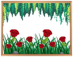 Cadre Roses Rouges et Plantes