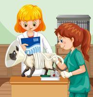 Docteur vétérinaire aidant un chat vecteur