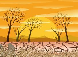 Un désert de sécheresse vecteur