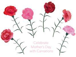 Set d'oeillets pour la fête des mères, anniversaire, mariage, etc. vecteur