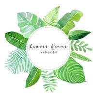 cadre aquarelle de feuilles vert tropical vecteur