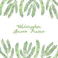 cadre aquarelle feuilles vertes vecteur