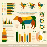 Éléments de design plat infographie élevage vecteur