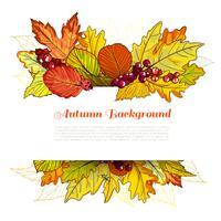 Frontière d'automne