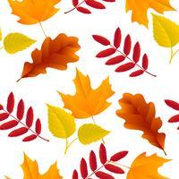 Motif feuilles d'automne sans soudure vecteur