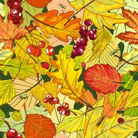 fond d'automne vecteur