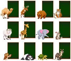 Tableau blanc avec des animaux sauvages vecteur