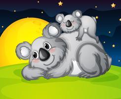 deux ours au repos vecteur