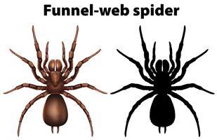 Entonnoir web araignée en silhouette et coloré vecteur