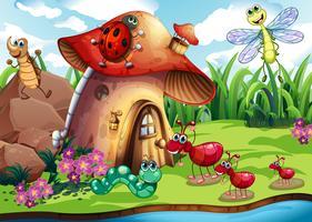 Colonie d'insectes