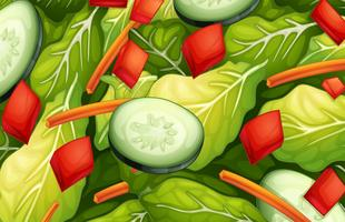 salade vecteur