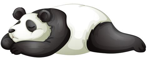 Panda vecteur