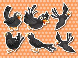 Oiseau noir vecteur