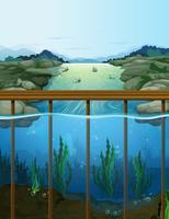 Scène de la nature avec des poissons dans la rivière