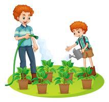 Père et fils arrosant les plantes