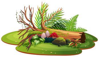 Nature isolée pour la décoration vecteur