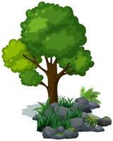 Arbre vert et herbe sur les rochers vecteur