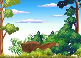 Une belle scène de forêt tropicale humide vecteur