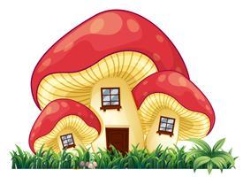 Champignons maison sur l'herbe