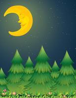 Lune nuit nature scène