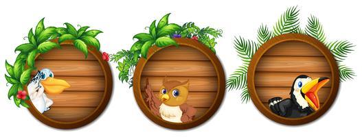 Trois planches de bois avec des oiseaux sauvages vecteur
