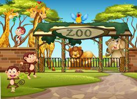 Animaux sauvages au zoo vecteur