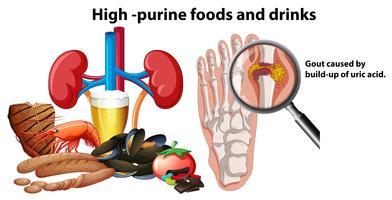 Aliments et boissons à haute purine vecteur