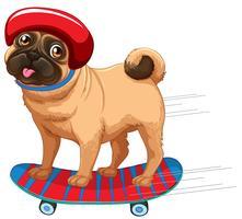 Un chien qui plie la planche à roulettes vecteur