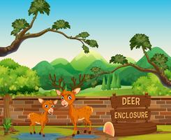 Deux cerfs dans le zoo safari vecteur