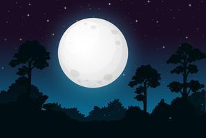 Une nuit de pleine lune noire vecteur