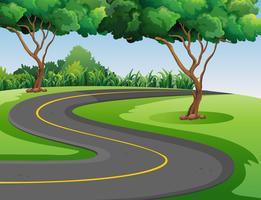 Route vide au milieu du parc