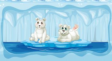 Ours polaire au pôle Nord vecteur