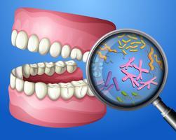 Un gros plan des bactéries orales vecteur
