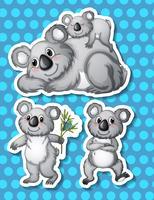 koala vecteur