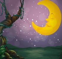 Un arbre géant et une lune endormie