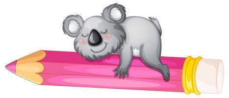 ours dormant sur un crayon vecteur
