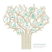 Concept d'arborescence de l'éducation
