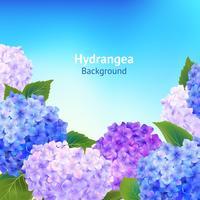 Fond de fleurs d'hortensia vecteur