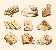 Collection de croquis de fromage vecteur