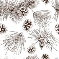 Modèle sans couture de branches de pin vecteur
