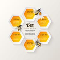 Étapes infographie abeille vecteur