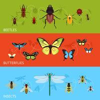Ensemble de bannière d'insectes vecteur