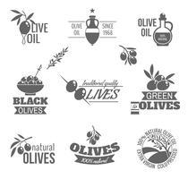 jeu d'étiquettes olives vecteur