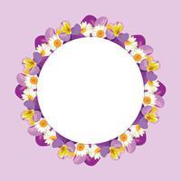 cadre de camomille et de pensées sur fond violet rose