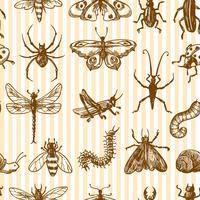 Insectes croquis monochrome modèle sans couture vecteur